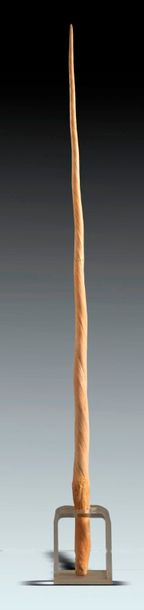 Natural History: A very large Narwhal tusk, 19th century on perspex stand, the tusk…
