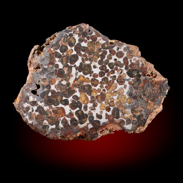 A Pallasite meteorite slice, Sericho Fall, 13.5cm by 10cm, 468g, A mainly Olivine…
