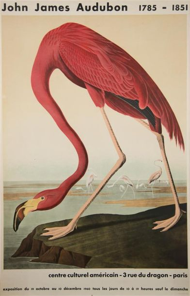 "AUDUBON James (1785 1851) ""Flamand Rose Paris, Centre Culturel Americain"" Trois …"